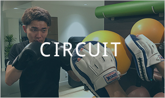 Circuit Fight(サーキットファイト)